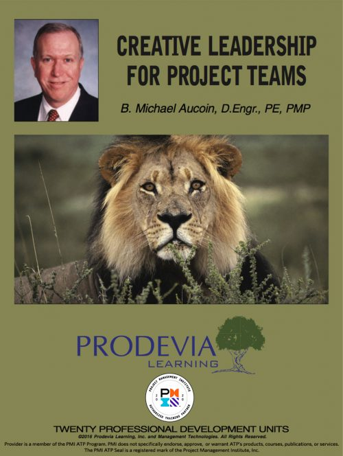 Creative Leadership for Project Teams