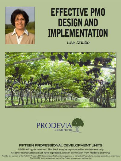 Effective PMO Design and Implementation
