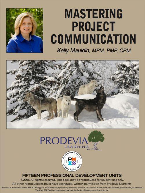 Mastering Project Communication