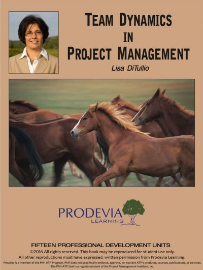 Team Dynamics in Project Management