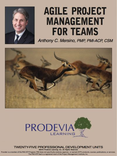 Agile Project Management for Teams