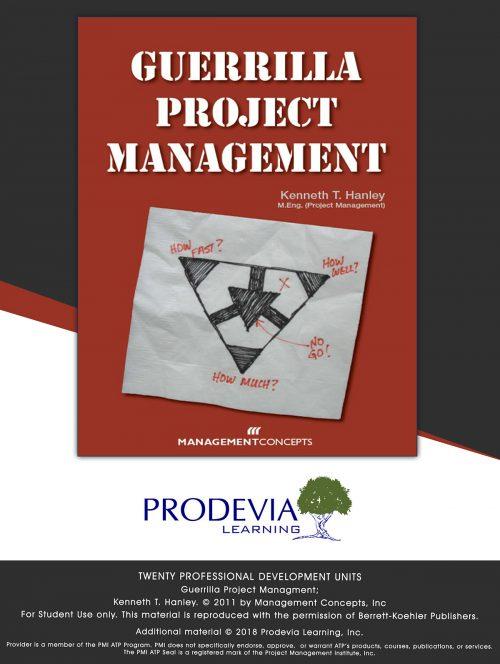 Guerrilla Project Management