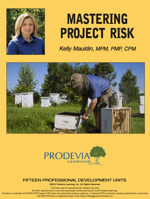 Mastering Project Risk